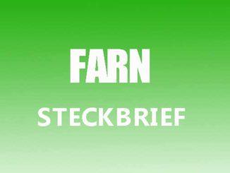 Teaserbild - Farn Steckbrief