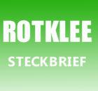 Rotklee Steckbrief