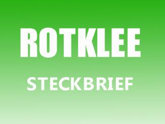 Teaserbild - Rotklee Steckbrief
