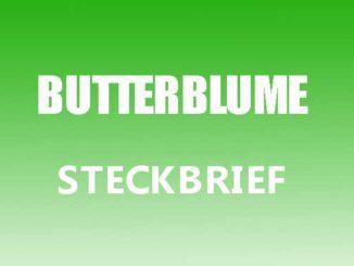 Teaserbild - Butterblume Steckbrief