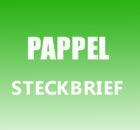 Pappel Steckbrief