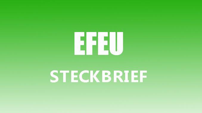 Teaserbild - Efeu Steckbrief