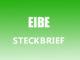 Teaserbild - Eibe Steckbrief