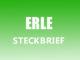 Teaserbild - Erle Steckbrief