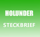 Holunder Steckbrief