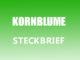 Teaserbild - Kornblume Steckbrief