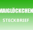Maiglöckchen Steckbrief