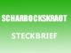 Teaserbild - Scharbockskraut Steckbrief