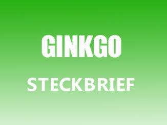 Teaserbild - Ginkgo Steckbrief