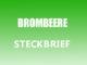 Teaserbild - Brombeere Steckbrief