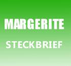 Margerite Steckbrief