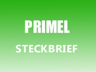 Teaserbild - Primel Steckbrief